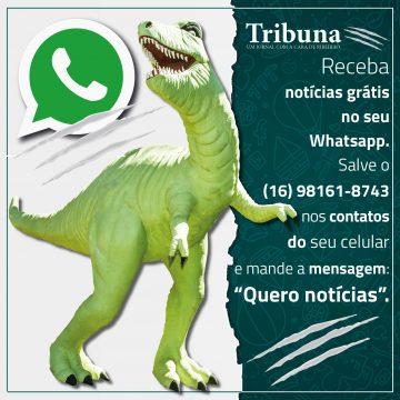 Anuncio Whatsapp 2018 2